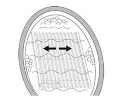 Praní plisé rolet
